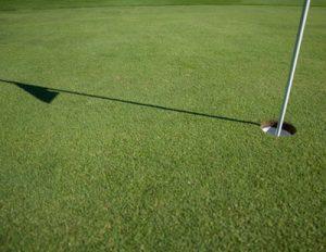 Full Golf Game Emersion