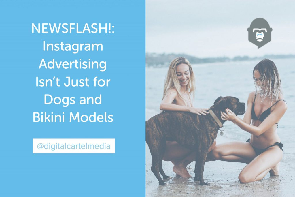 NEWSFLASH!_ Instagram Advertising Isn't Just for Dogs and Bikini Models