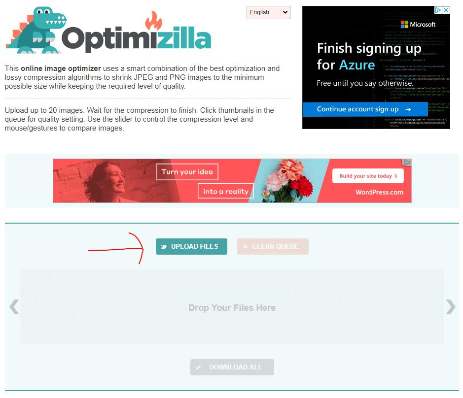 Web Page Optimization Images