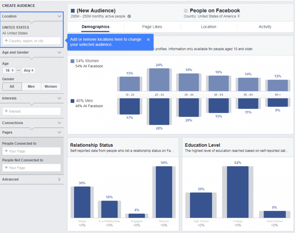 Facebook Customer Audience Insights